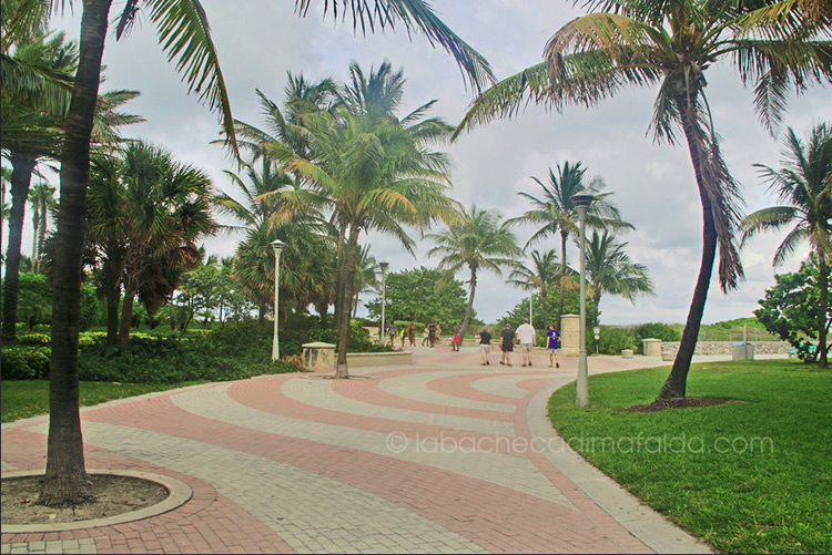 miami beachwalk